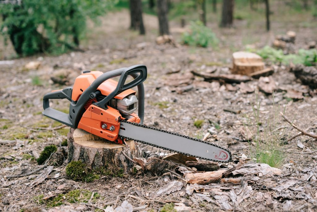 electric, sharp orange chainsaw on wood stump in forest